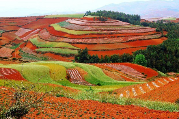 Dongchuan Red Land na China