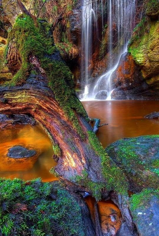 Roughting Linn Waterfall Northumberland Inglaterra